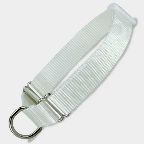 Martingale Dog Collar, Nylon, White, X-Small, Small, Medium, Large, X-Large