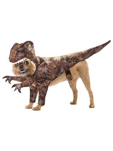 Animal Planet PET20109 Raptor Dog Costume, Small -