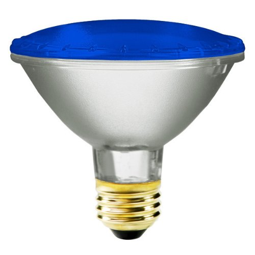 Bulbrite H75PAR30B 120V 75W PAR30 Halogen Light, Blue