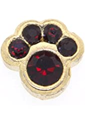 January Birth Month Paw Print Floating Charm for Heart Lockets
