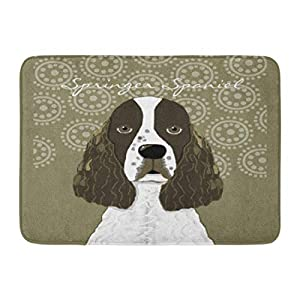 SPXUBZ English Springer Spaniel Brown White Non Slip Entrance Rug Outdoor/Indoor Durable and Waterproof Machine Washable Door mat Size:18x30 inch 13