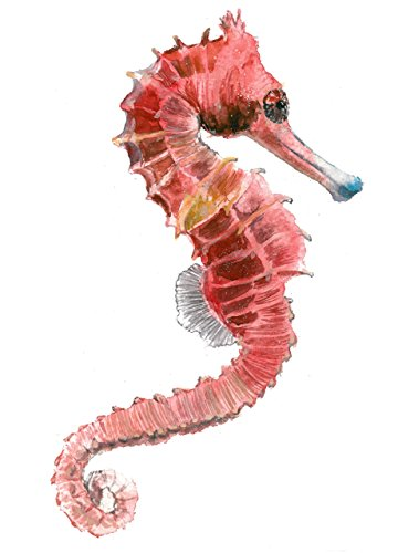 41%2BSIqWHKJL The Best Seahorse Artwork You Can Buy