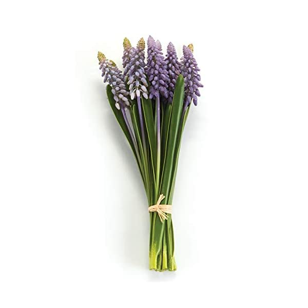 MUSCARI HYACINTH BUNCH, BLUE, 11-INCH