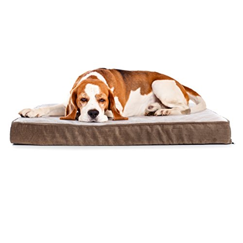 Milliard Quilted Padded Orthopedic Dog Bed, Egg Crate Foam with Plush Pillow Top Washable Cover (41 inches x 27 inches x 4 inches) (Dog Beds For Extra Large Crate)