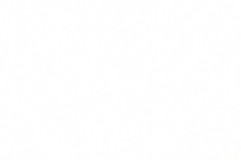 Stihl Schutzbrille CONCEPT EN 166, beschlagfrei, kratzfest gelb