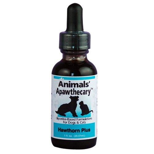 Animal Essentials Fish Oil - Animal Essentials Heart Health 2 fl oz