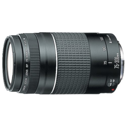 Canon 75 300mm 4 5 6 Telephoto Cameras product image