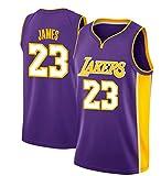 VICTOREM LeBron James #23 Men's Basketball Jersey - NBA Lakers, New Fabric Embroidered Swingman Jersey Shirt (Size: M-XXL)