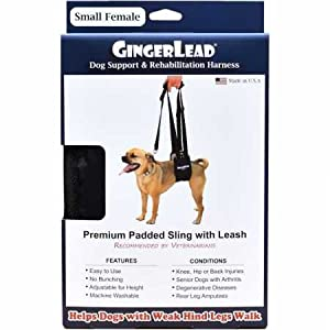 GingerLead Dog Support & Rehabilitation Harness – Small Female Sling – Ideal for Aging, Disabled, or Injured Dogs… Click on image for further info.
