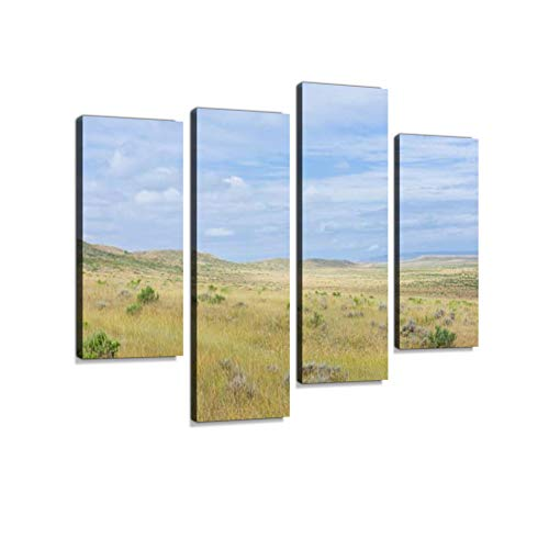 (Open Prarie, Grassland and Sagebrush Near Vermillion, Nebraska, USA. Canvas Wall Art Hanging Paintings Modern Artwork Abstract Picture Prints Home Decoration Gift Unique Designed Framed 4 Panel)