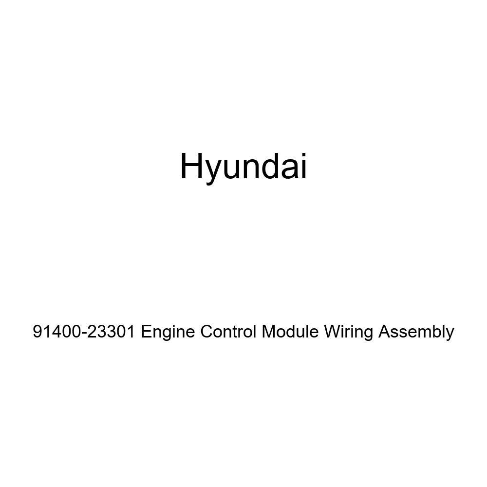 Genuine Hyundai 91400-23301 Engine Control Module Wiring Assembly