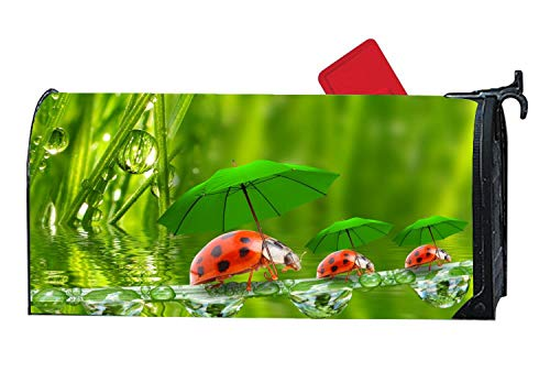 Ladybugs Under Green Umbrellas Mailbox Covers Personalized Magnetic Mailbox Cover Sized Mailboxes for Us - Sox Ladies Green