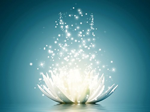 Artland Qualitätsbilder I Bild auf Leinwand Leinwandbilder Vadim Georgiev Magie der Lotus-Blume türkis Botanik Blumen Seerose Digitale Kunst Blau A7KR