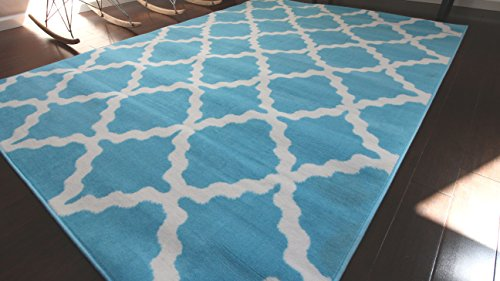 light blue and white rug - 8