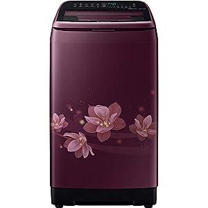 Samsung 6.5 kg Inverter Fully-Automatic Top Loading Washing Machine (WA65N4570FM/TL, Plum)