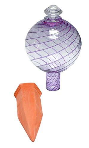 Plant Nanny Purple Spiral Watering Globe with Stake, 24 oz. by Plant Nanny