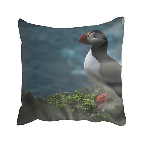 Ranhkdn Grass Deadlock Pillowcase Hidden Zipper, Custom Printing Pillow Case for Home Decor 18 x 18 inch