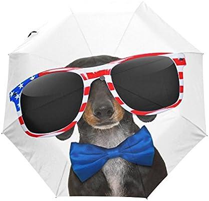 469cf2e746 Amazon.com  Naanle Dachshund Dog American Flag Glasses Blue Bow Auto Open  Close Foldable Umbrella  Sports   Outdoors