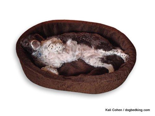 """American Made 40"""" XL Dog Bed King USA Cuddler. Brown Imitati"""