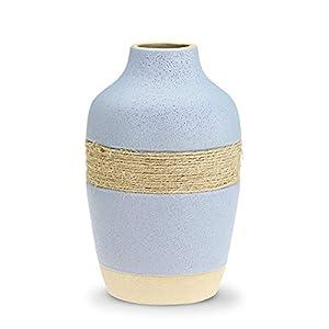 41%2BTn7itAsL._SS300_ Beach Vases & Coastal Vases