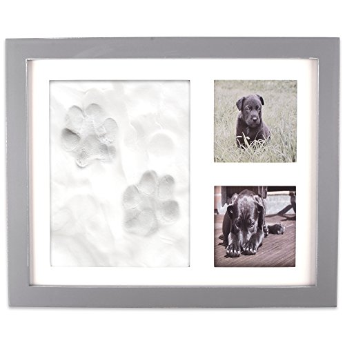 Home Traditions Z02161 Keepsake Frame for Dog, Cat Or Other Pet Photos and Paw Wall Or Desk-Holds Two 3x3 Images and Clay Included for Imprints by Home Traditions