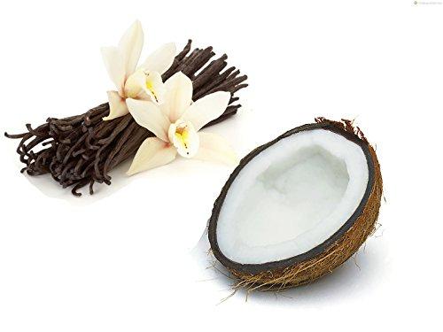 Papa Steve's No Junk Raw Protein Bars- Vanilla Cashew Coconut, 2.2 Oz, 10 Count