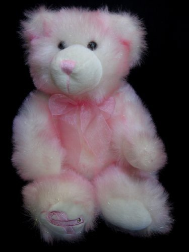 Build a Bear Hopeful Wishes Teddy 16