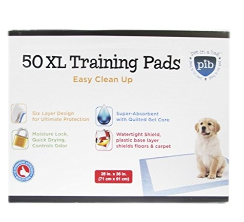 Creative Pet Group Training 36 Inch product image