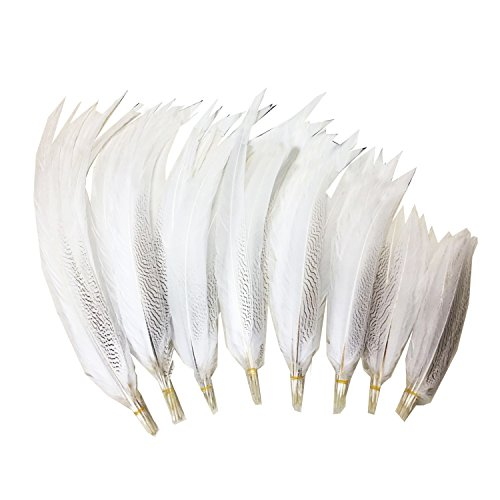 100% Natural Silver Pheasant Feather 30-35cm/12-14inch for DIY Costume Headdress