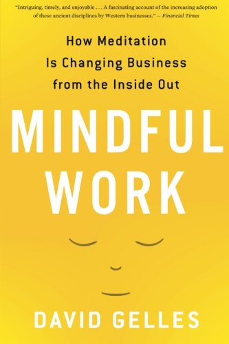 (Mindful Work: How Meditation Is Changing Business from the Inside Out (Eamon Dolan) )
