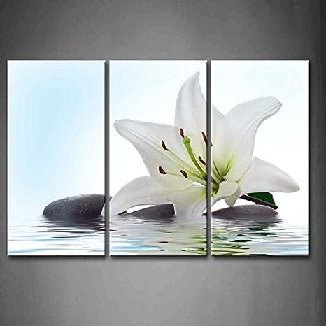 First Wall Art - Flores de Lirio Cuadros en Lienzo Flor Blanca y Piedras en el Agua Decoracion de Pared 3 Piezas Modernos Planta Mural Fotos para Salon,Dormitorio,Baño,Comedor