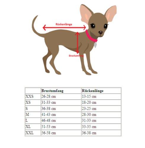 Doggydolly Abito da Cerimonia per Cani, L, Avorio