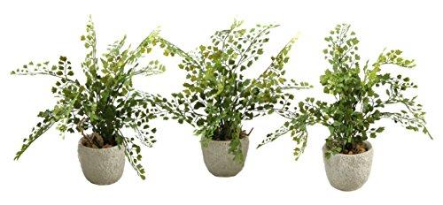 D & w silks maiden hair fern in coral reef vase