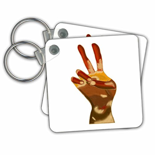 Tone Peace Sign - CherylsArt Signs Peace - Painting of a Peace Sign Hand in Multiple Skin Tones - Key Chains - set of 2 Key Chains (kc_271106_1)
