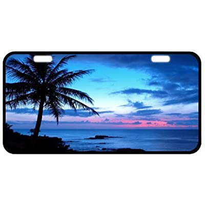 """Tropical Paradise Ocean Beach Scene with Palm Trees Novelty License Plate Decorative Front Plate 6.1"""" X 11.8"""": Home & Kitchen"""
