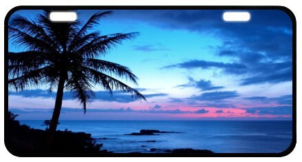 (Tropical Paradise Ocean Beach Scene with Palm Trees Novelty License Plate Decorative Front Plate 6.1
