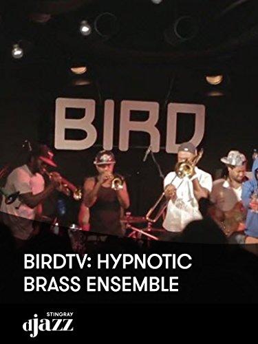 BIRDtv: Hypnotic Brass Ensemble
