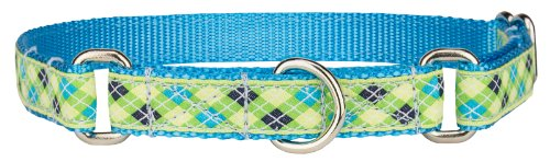 Country Brook Design Lime Green and Blue Argyle Woven Ribbon Martingale Dog Collar Limited Edition - Small