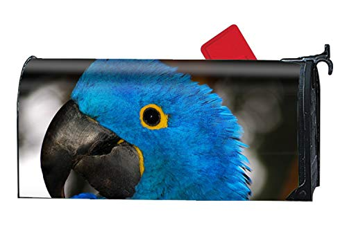Greicmn Animal Hyacinth Macaw Birds Magnetic Mailbox Covers, Yard Decorations Suitable for Spring, Summer, Fall/Autumn and -