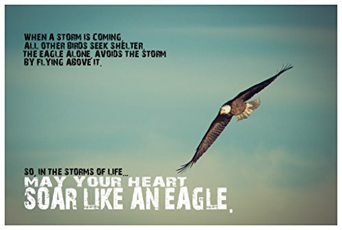 (JSC276 Soar Like An Eagle Poster | 18-Inches By 12-Inches | Premium 100lb Gloss Poster)