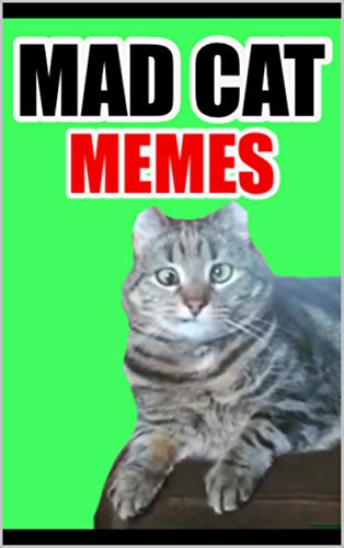 (Memes: CATTO MEMES Funny Memes With Cats: Epic and CUTE)