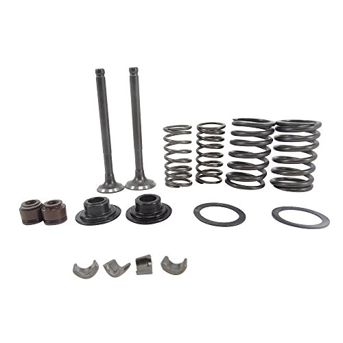 Intake Valve and Exhaust Valve Springs Stem Seals for GY6 50cc 139QMB ATV,Moped/Scooters,16pcs,Valve+Spring+Lock+Gasket Set ()