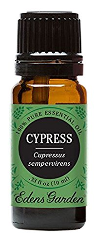 Edens Garden Cypress 10 ml 100% Pure Undiluted Therapeutic Grade Essential Oil GC/MS Tested
