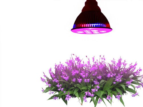 Taotronics E27grow lights for plants in garden greenhouse