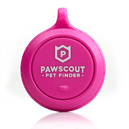 pawscout-smart-tag-for-dogs-and-cats-pink