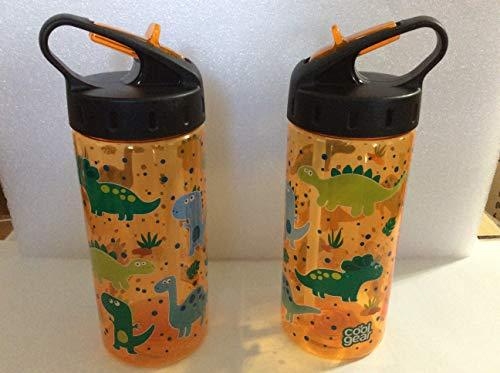 dinosaur water bottle - 9