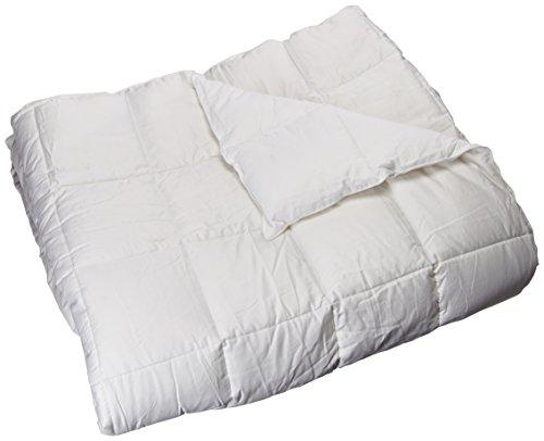 Sleep Philosophy Level 2 Warmer 3M Thinsulate Down Alternative Comforter, King (Down Comforter Level)