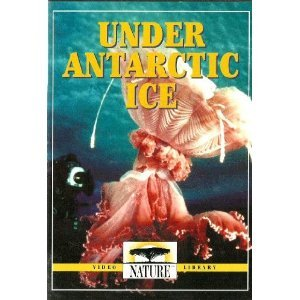 Under Antarctic Ice : PBS Nature Series - Seals , Penguins , Jellyfish , Sponges , Killer Whales & More