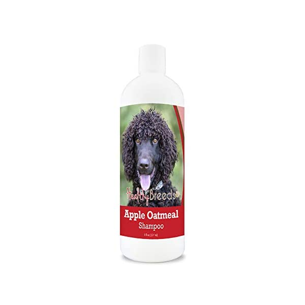 Healthy Breeds Apple Oatmeal Shampoo Spray that moisturizes and the anti inflammatory properties hydrate cool and soothe damage coat and skin.  Relief from dry skin flea bites 8oz 1