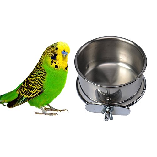 Stainless Steel Hanging Bowl Bird Seed Food Feeding Dish Water Feeder for Parrot Macaw African Greys Budgies Parakeet Cockatiels Conure Lovebirds Finch Pigeon Cage